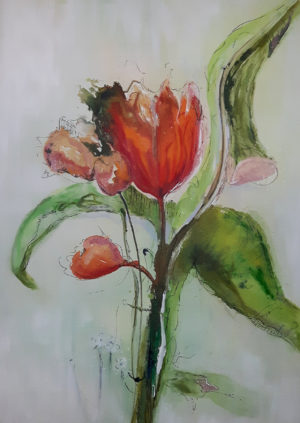 Tulpe Postkarten A6